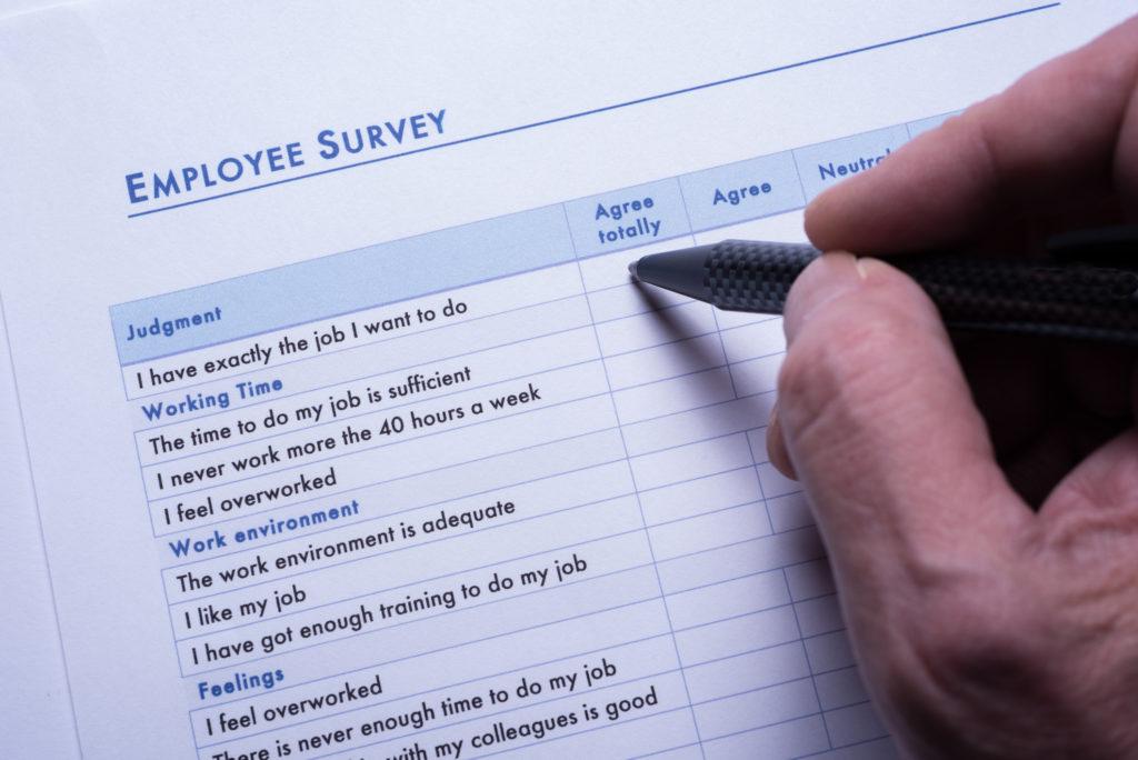 Employee Surveys 1024x684